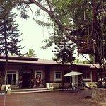 Villa Diana Hotel & Cafe Photo
