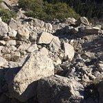 Discover Yosemite Foto