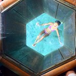 Your private viewing underwater world!