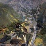 la faune de montagne