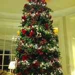 This gorgeous tree was in the foyer