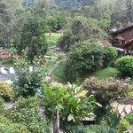 Photo of Hotel Verde que te quero verte