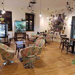 Enjoy a cup of coffee, tea, hot chocolate or mould wine and relax in Vasmacska KaveZoo.