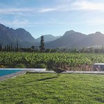 View from the swimming pool at La Providence, Franschhoek
