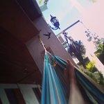 Foto de Hotel Nueva Granada