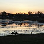 Sunset over lake, from our site with ibis with wings stretched out.