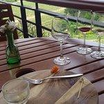 Vineyard view from restaurant