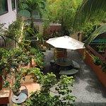 Nice garden in back area of Sofia