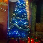 Christmas Tree at The Plough, Tiptoe
