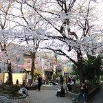 Photo de Sakura Hotel Hatagaya