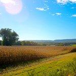 New Paltz Farms, NY