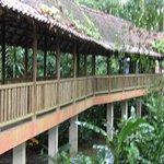 Photo of Hotel El Bambu