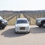 North Fork Wine Tour Vehicles for Wine Tours