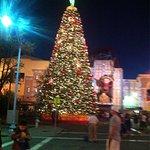 Photo of Orlando Metropolitan Resort