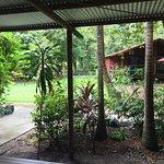 Photo of PK's Jungle Village