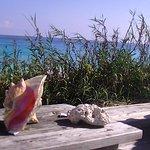 Oceanfrontier Hideaway Photo