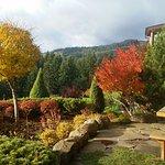 Foto di Sakura Ridge - The Farm and Lodge