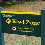 Hinweisschild auf die berühmten Kiwis