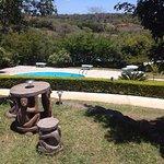 Espace piscine en communion avec la nature