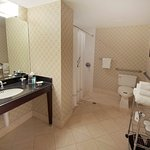 Hamilton Crowne Plaza Hotel Foto
