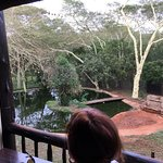Photo de Zululand Tree Lodge