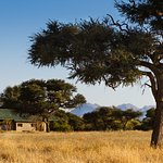 Ondekaremba Lodge in the African bush savannah and yet just a 10 minutes drive from the airport