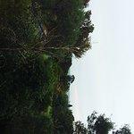 IMG_20161221_172646_large.jpg