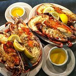 4 lb. Lobsters