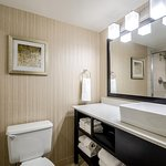 Embassy Suites by Hilton Indianapolis - North Foto