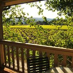 View From Our Vineyard View Rooms