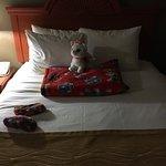 Photo de Comfort Inn & Suites Jupiter