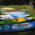 Our SUP fleet has a wide range of sizes and styles.