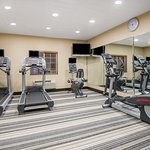All new fitness equipment