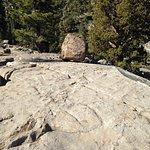 Glacial Erratics on the Eagle Lake Trail