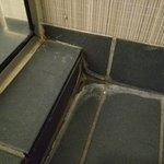 Room 316 - Moldy shower tiles