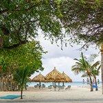 Arrival at Boardwalk Hotel Aruba's Beach on Palm Beach Aruba