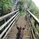 Photo de Molokai Mule Ride