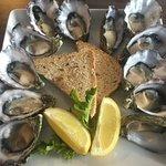 Foto de The Oyster Bar