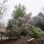 The Greely Gardens after a light snowfall