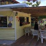 Magnifico angolo di oasi costaricense dove si possono gustare aperitivi e cibi unici. Accoglienz