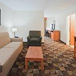 Holiday Inn Express Hotel & Suites Bainbridge Foto