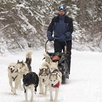 Me, a first time musher driving the team