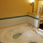 Holiday Inn Express Hotel & Suites Detroit North - Troy Foto