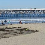 Foto di Pacific Beach
