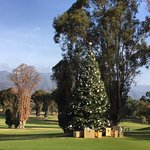 Even golf course decorates for Christmas