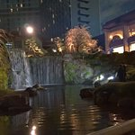 The night view of a water fall in the Japanese garden