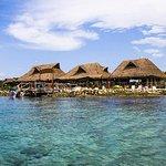 SkyReef Beach Club: Snorkeling Package with Tequila Tasting