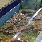 Photo de Grand Straits Garden Seafood Restaurants
