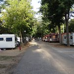 Foto de Camping Fuentes Blancas