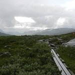 Piece of the Kungsleden